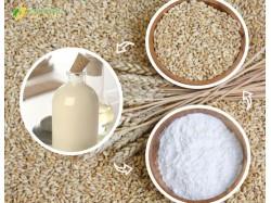 bột cám gạo ngọc trai sữa non
